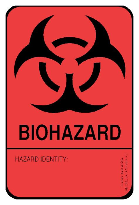 printable biohazard label fisherbrand large blank writable biohazard identity label