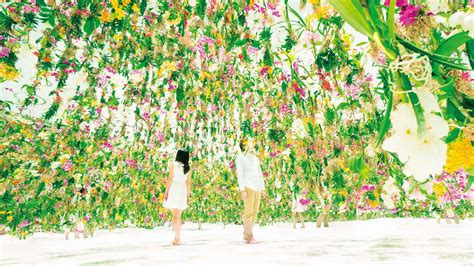 flower garden florist floating flower garden flowers and i are of the same root