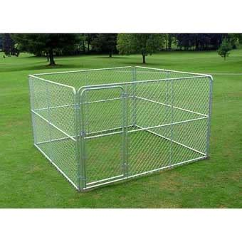steel kennel stephens pipe steel kennel complete 10ft x 10ft x 6ft gold myagway