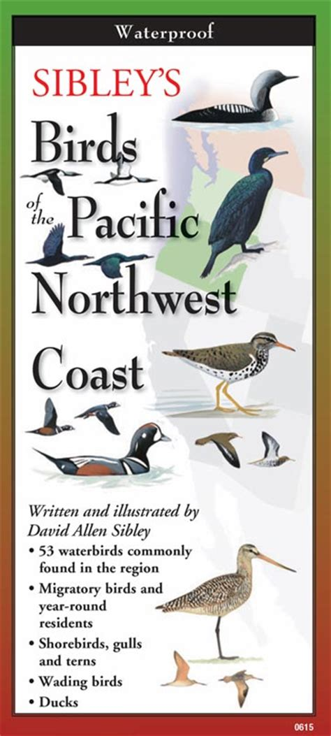 sibley s birds of the pacific northwest coast by written