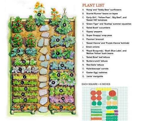 Flower And Vegetable Garden Layout Vegetable Garden Layout Gardening Flowers 101 Gardening Flowers 101