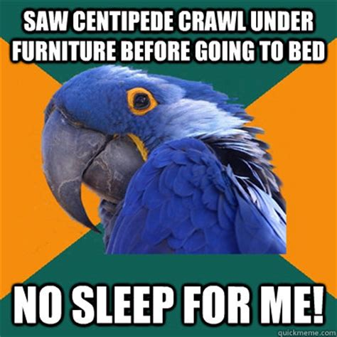 Go To Bed Meme - saw centipede crawl under furniture before going to bed no