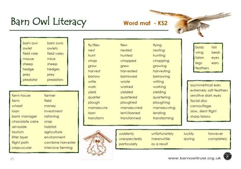 Information About Mat by Barn Owl Conservation Literacy Educational Resources The Barn Owl Trust