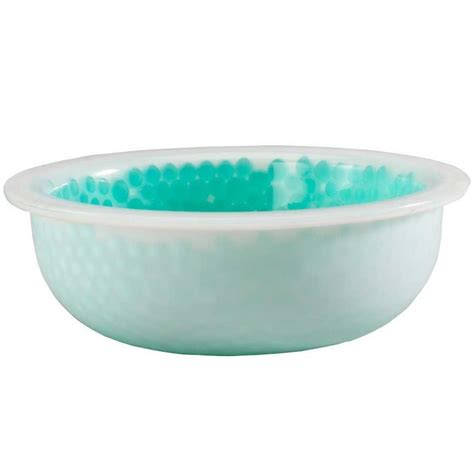 water dish chilled water bowl in pet bowls