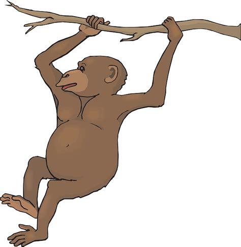 monkey swinging clipart free swinging monkey clip art