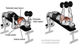 grip decline bench press decline hammer grip dumbbell bench press