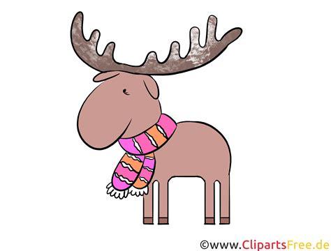 clipart illustrations elch clipart illustration bild kostenlos