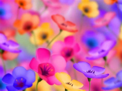 simboli dei fiori simboli e significati dei fiori significato fiori