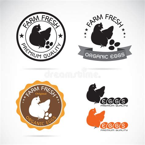 Beschriftung Huhn by Satz Des Vektors Ein Huhn Und Eier Beschriften Vektor