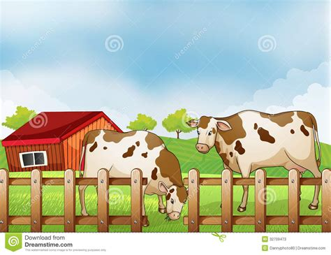 House Plan Styles by A Farm With Two Cows Inside The Fence Stock Photos Image