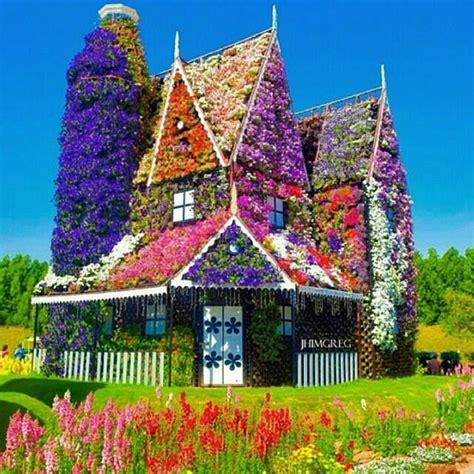 flowers house 1000 images about gardening on pinterest canada