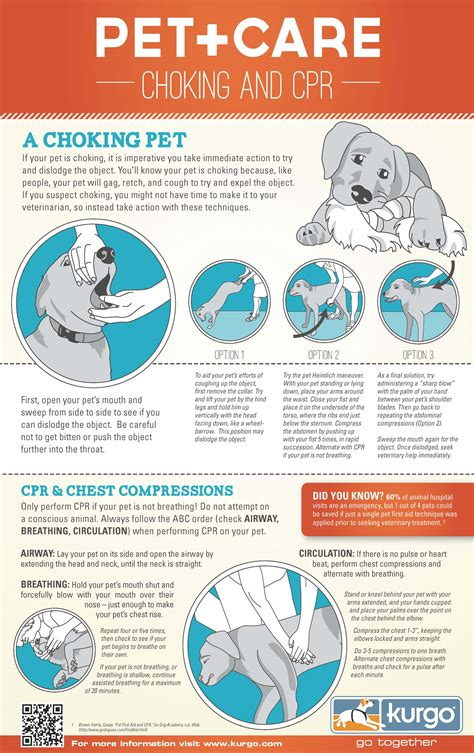 cpr on a free printable pet cpr and emergency pet posters how to do cpr on a