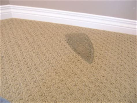 bad rug burn repairable conditions fort wayne in referral cleaning restoration
