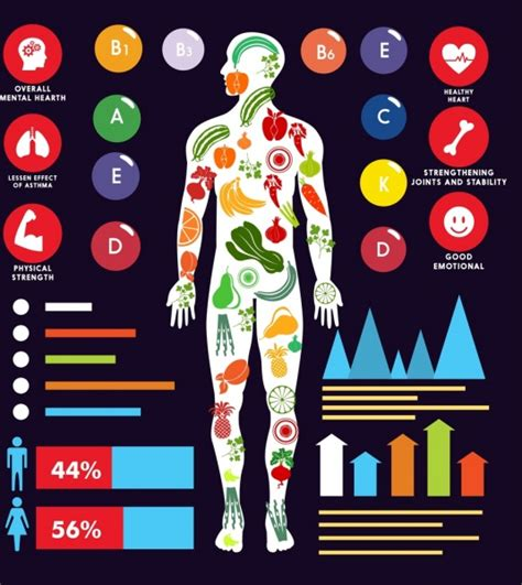 the best height for hanging art with infographic vitamin benefits infographic human body icon charts decor
