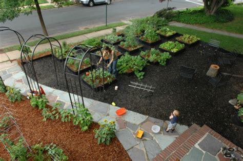 front yard vegetable gardens pictures of front yard vegetable gardens one hundred