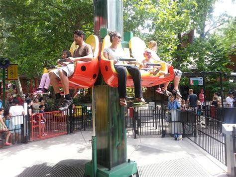 theme park for under 10s ride ok for under 10 kids picture of lagoon amusement