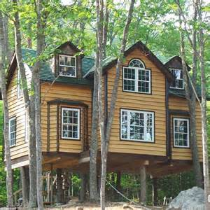 how to build own house builder who is obsessed with tree houses builds his dream