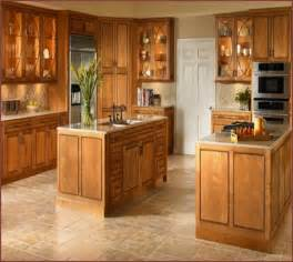 Kitchen Maid Cabinets by Quaker Maid Cabinets Home Design Ideas