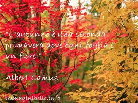 link fiori da condividere foto sull autunno immagini