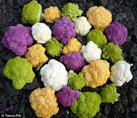 colored cauliflower colourful cauliflower available at tesco eat your greens
