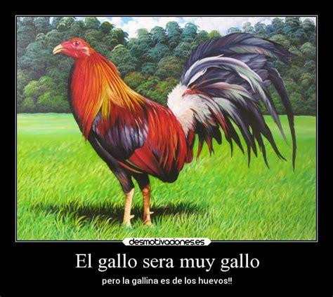 the gallery for gt frases de amor para mi novio que esta imagenes de gallos con frases newhairstylesformen2014 com