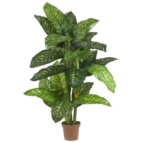 silk plants 5 foot dieffenbachia potted 6573