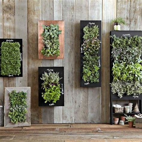 wall mounted planter wall mounted planters are ideal for herbs and small spaces