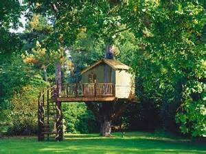 awesome tree houses icepice