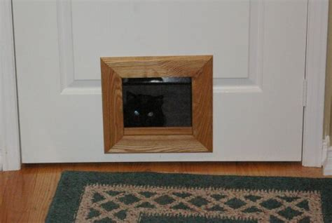 Interior Cat Doors For The Best Pets Ever Interior Door With Pet Door