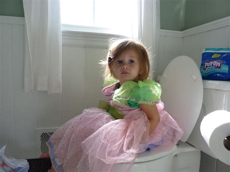 how to your to potty in the toilet tips for potty madailylife