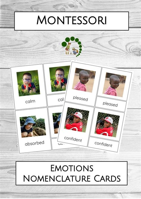 printable montessori cards montessori emotions nomenclature cards montessori nature