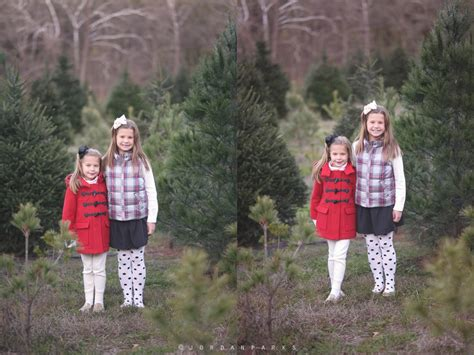 christmas tree farm session st louis family