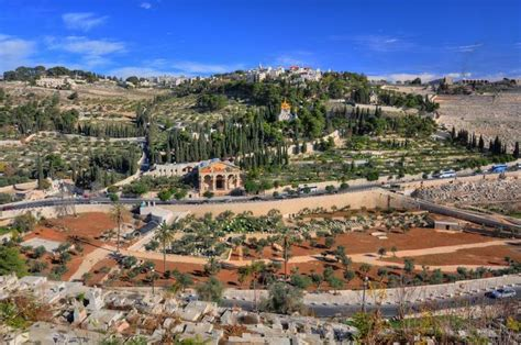 Olive Garden Montana by Mount Of Olives