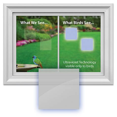 window alert bird collision decals square 8 pack