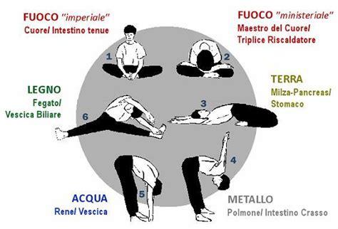 esercizi spalle a casa conoscete esercizi per spalle e schiena fitness