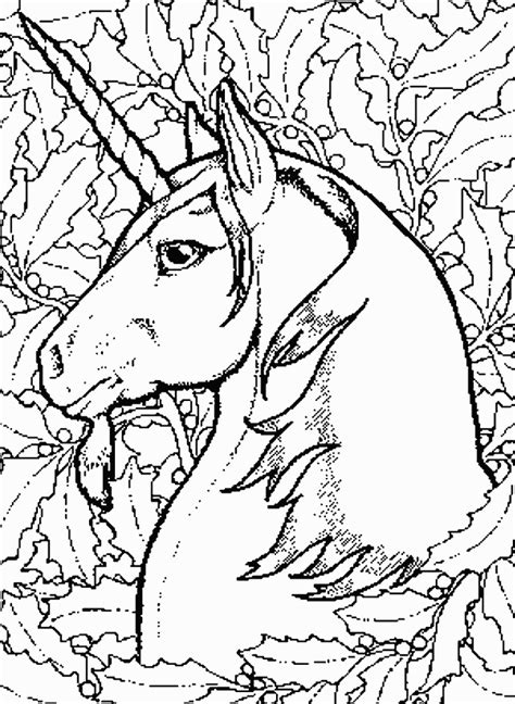 unicorns 9 fantasy coloring pages coloring book
