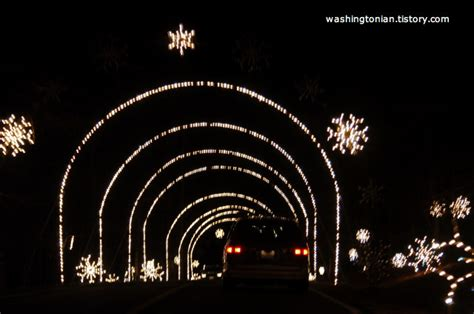 seneca park lights 워싱턴 디씨의 다양한 정보 winter lights at seneca creek state park
