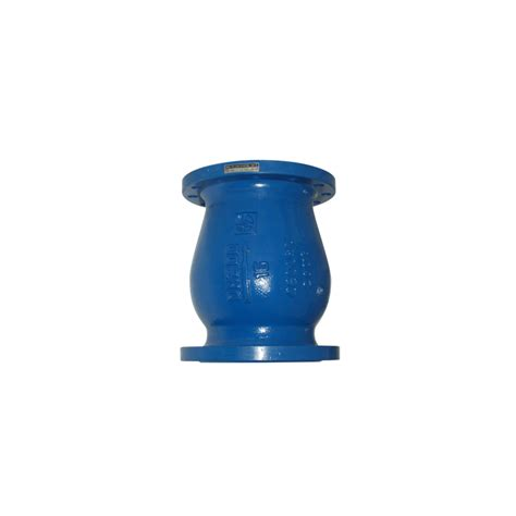 Ducktile Iron Wafer Check Valve ductile iron noozle check valves pn 10 and 16
