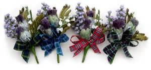 Flower Aberdeen - scottish thistle flowers by thistle flowers usa las vegas