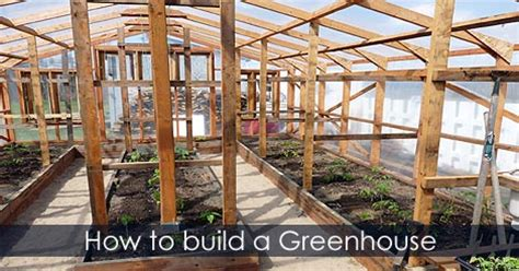 greenhouse gardening a beginners guide to building and growing plants in a greenhouse books build wood greenhouse usa plastic and polycarbonate
