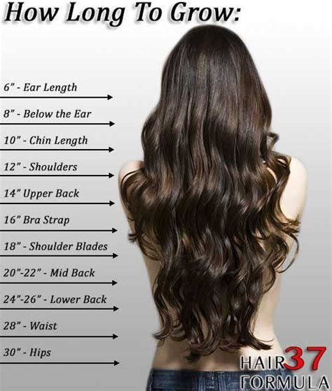Hair Length For Type by Top 25 Ideas About Hair Length Chart On
