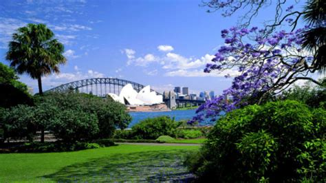 Domain Botanical Gardens The Royal Botanic Garden Sydney The Domain Aroundyou