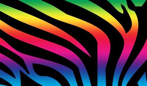 colorful zebra wallpaper zebra print pattern print rainbow zebra 149212