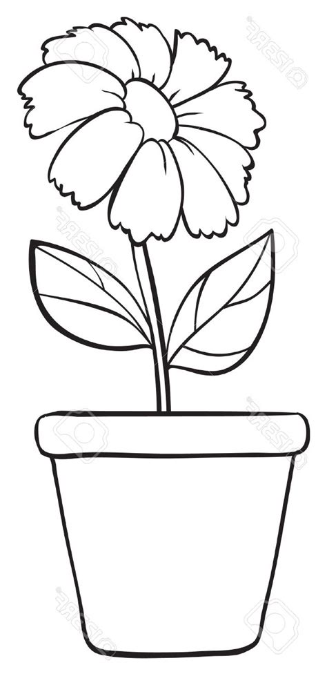 printable pictures of real flowers simple flower pot drawing flower pot coloring printable