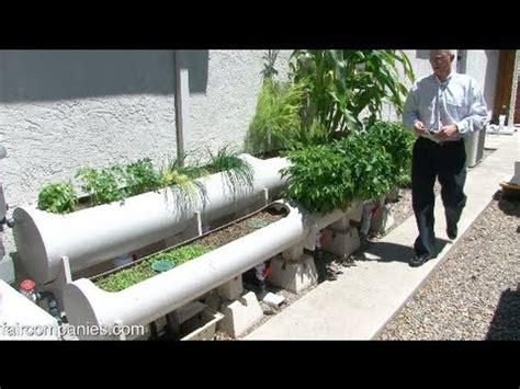 backyard hydroponics strawberry towers aquaponic systems how to save money and do it yourself