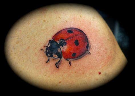 tattoo ideas ladybugs ladybug tattoos and designs page 13
