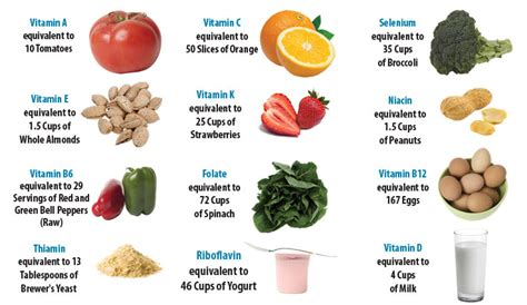 vegetables vitamins what vitamins are the best bodybuildertime