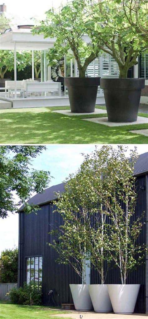 large pot project  garden  yard