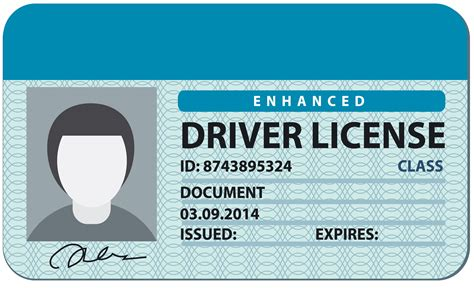 free drivers license template blank drivers license www pixshark images