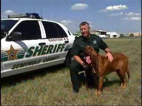 Seminole County Sheriff Search Seminole County Sheriff S Office K 9 Unit